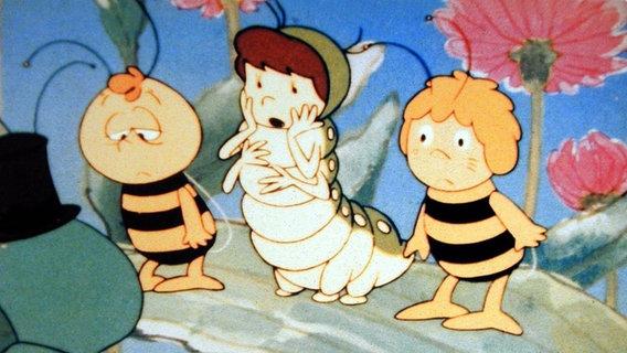 """Zu sehen ist ein Ausschnitt aus dem Zeichentrick """"Die Biene Maja"""". © imago / United Archives Foto: United Archives"""