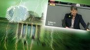 Screenshot aus dem Video Neulich im Bundestag (122) © picture alliance / Fotolia.com Fotograf: Adler: Fotolia.com / Fotograf: Roadrunner, Blitz: picture alliance / Okapia KG Fotograf: Nathalie Dautel, Reichstag: NDR / Fotograf: Christine Raczka