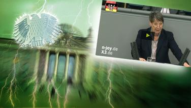 Screenshot aus dem Video Neulich im Bundestag (122) © picture alliance / Fotolia.com Foto: Adler: Fotolia.com / Fotograf: Roadrunner, Blitz: picture alliance / Okapia KG Fotograf: Nathalie Dautel, Reichstag: NDR / Fotograf: Christine Raczka