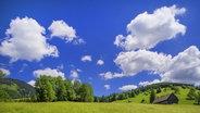 Das Bild zeigt eine grüne Wiese bei Sonnenschein. © imago/Blickwinkel Fotograf: Blickwinkel