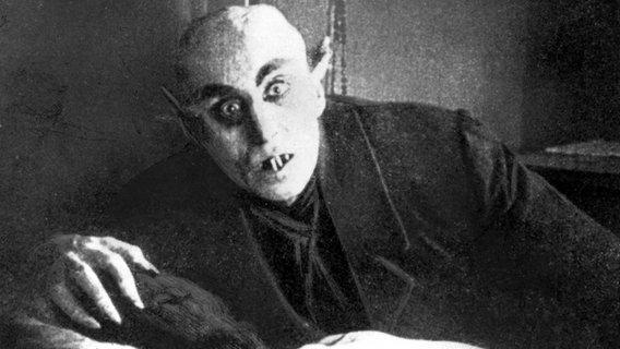 Nostferatu, eineSymphonie des Grauens(Deutschland 1921) © picture-alliance / Mary Evans Picture Library