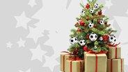 Ein weihnachtsbaum mit Fußbällen geschmückt.  Foto: NDR / Nikolayn / Lily