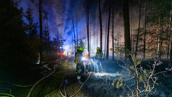 Feuerwehreinsatzkräfte löschen im dunklen Wald.