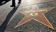 Der Stern von Udo Lindenberg auf der Reeperbahn - wie auf dem Hollywood Boulevard © dpa Fotograf: dpa