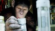 """Szene aus dem Film """"Planet der Affen: Prevolution"""" © 20th Century Fox"""