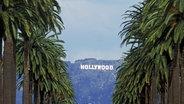 """""""Hollywood"""" steht in großen Lettern in den Hügeln über Los Angeles, gesehen vom Hollywood Boulevard aus © dpa - Report Foto: Chad Ehlers"""