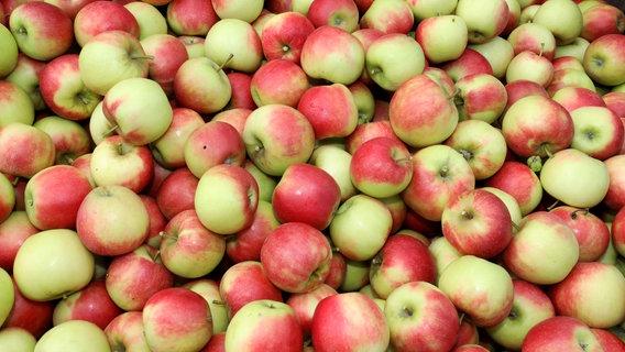 Viele Äpfel. © picture alliance/Bernd Wüstneck/dpa Foto: Bernd Wüstneck