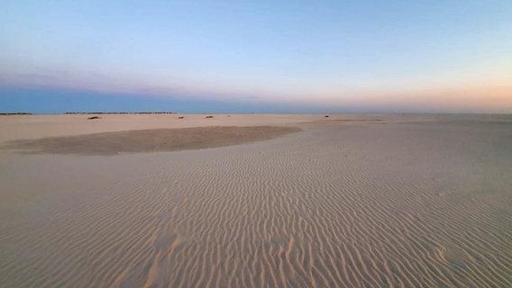 Der Sandstrand auf Amrum. © NDR/N-JOY Foto: Katharina Ratzmann