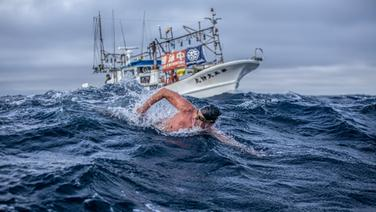 Extremschwimmer André Wiersig schwimmt im Meer - hinter ihm fährt ein Begleitboot. © Dennis Daletzki Foto: Dennis Daletzki