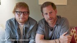 """Ed Sheeran & Prinz Harry: """"Passt auf euch und eure Freunde auf!"""""""