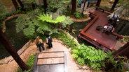 Eine Tropeninsel mit Palmen im Terminal des Flughafens Singapur. © picture alliance / Arco Images GmbH