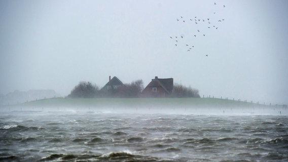"""Häuser sind während """"landunter"""" auf der nordfriesischen Hallig Langeneß in der Nordsee zu sehen. © picture alliance/Maja Hitij/dpa Foto: Maja Hitij"""