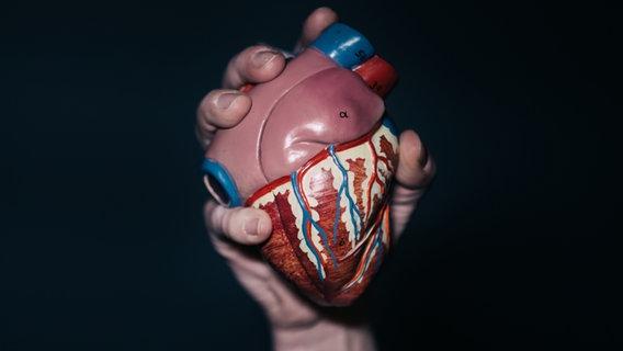 Eine Hand hält ein Modell-Herz in die Luft. © photocase.de / dioxin Foto: photocase.de / dioxin