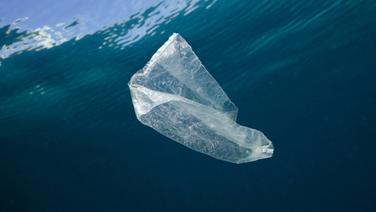 Eine Plastiktüte schwimmt im Meer. © picture alliance / Prisma