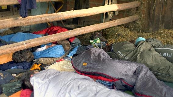 Jugendliche in Schlafsäcken in einer Scheune. © NDR/Benjamin Arcioli Foto: Benjamin Arcioli