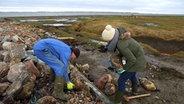 Zwei Personen schleppen Steine für den Küstenschutz. © NDR/Lars Kaufmann Fotograf: Lars Kaufmann