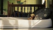 """Das Mehrbett-Schlafzimmer im """"Mohau Centre"""", einem Waisenhaus in Südafrika. © Willem Konrad"""