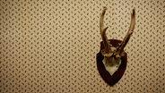 Zu sehen ist ein Geweih an der Wand. © jockelo / photocase.de Foto: jockelo