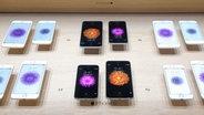 Mehrere iPhone 6 und iPhone 6 Plus Modelle liegen in einer Auslage. © Apple Foto: Apple