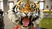 Mann mit Tigermaske © Animal Face Foto: N-JOY