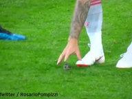 Fussballer Isco greift mit der Hand nach einem Vogel auf dem Fußballplatz. © Twitter.com / Rosario Pompizzi Fotograf: Screenshot