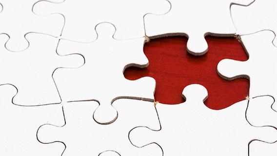 Puzzle mit fehlendem Teil © fotolia/Karen Roach