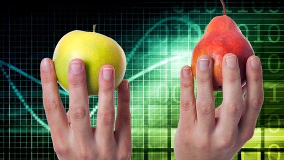Eine Hand hält einen Apfel, eine andere eine Birne. © Fotolia Foto: kentoh , mdworschak