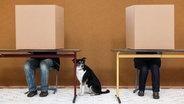 Zu sehen sind zwei Menschen in Wahlkabinen mit einem Hund. © picture alliance / dpa Fotograf: Bodo Marks