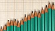 Bleistifte bilden eine Kurve © picture alliance / blickwinkel Fotograf: McPHOTO/BilderBox